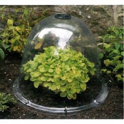 Cloche à semis 26 cm (lot de 4)