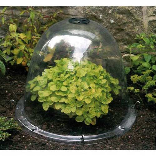 Cloche a semis 26 cm lot de 4